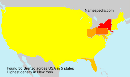 Familiennamen Brenzo - USA