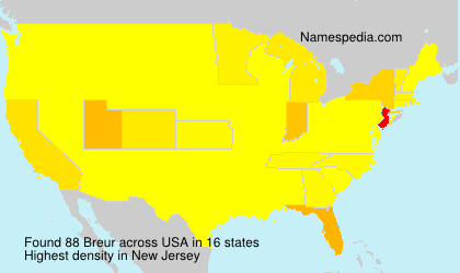 Surname Breur in USA