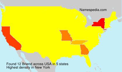 Surname Briend in USA