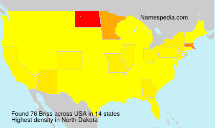 Surname Briss in USA