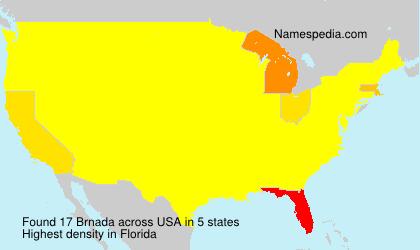 Familiennamen Brnada - USA
