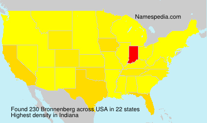 Surname Bronnenberg in USA