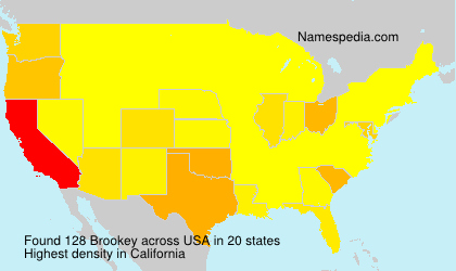 Surname Brookey in USA
