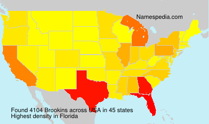 Surname Brookins in USA