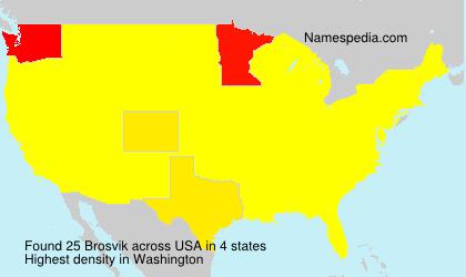 Surname Brosvik in USA
