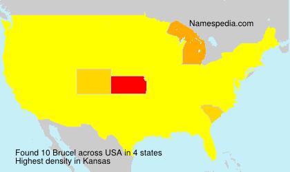 Surname Brucel in USA