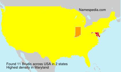 Familiennamen Brudis - USA
