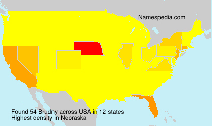 Surname Brudny in USA