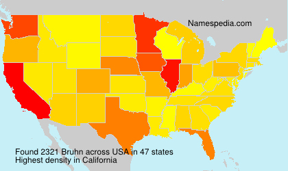 Surname Bruhn in USA