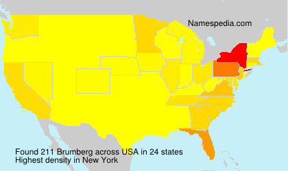 Surname Brumberg in USA