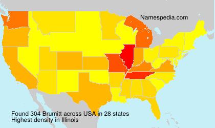 Surname Brumitt in USA