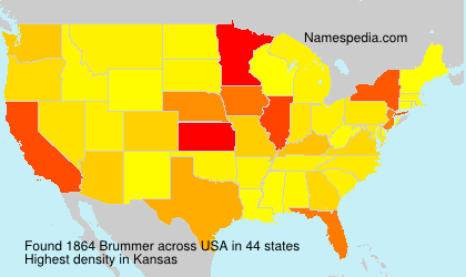 Brummer - USA