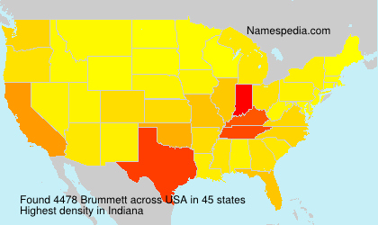 Surname Brummett in USA