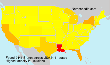Surname Brunet in USA