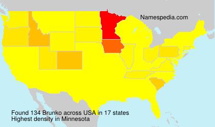 Surname Brunko in USA