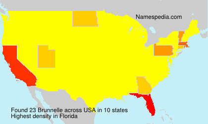 Brunnelle - USA