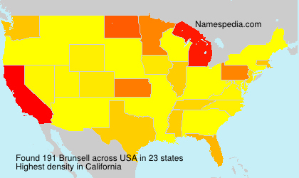 Surname Brunsell in USA