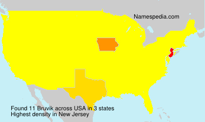 Surname Bruvik in USA