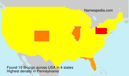 Surname Bruzgo in USA