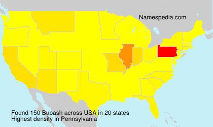 Surname Bubash in USA