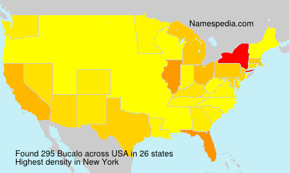 Surname Bucalo in USA