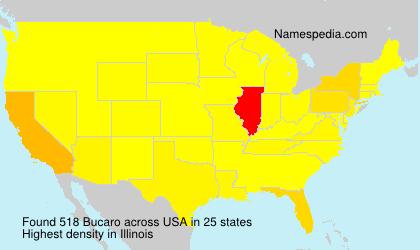 Bucaro - USA