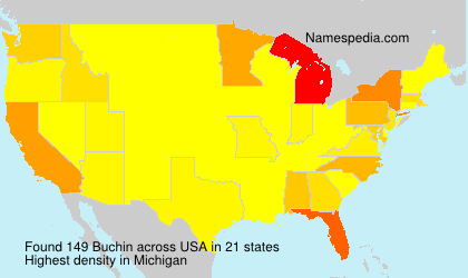 Surname Buchin in USA