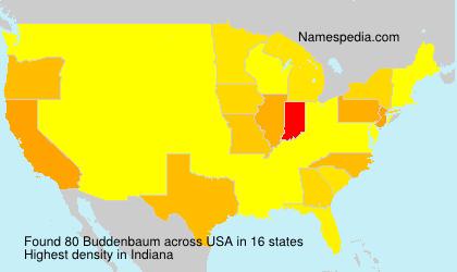 Buddenbaum - USA