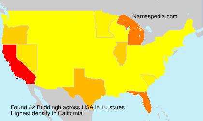 Surname Buddingh in USA