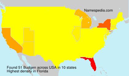 Surname Budgen in USA