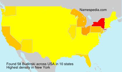 Budinski - USA