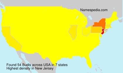 Surname Budis in USA