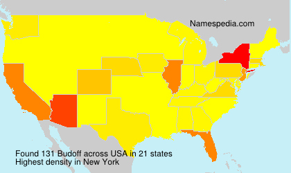 Surname Budoff in USA