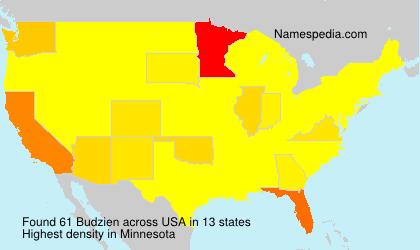 Surname Budzien in USA