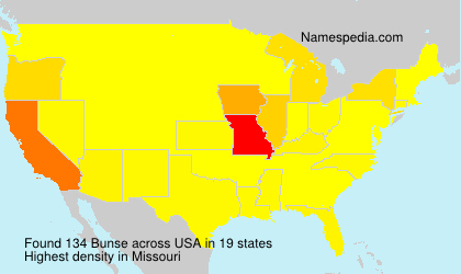 Surname Bunse in USA