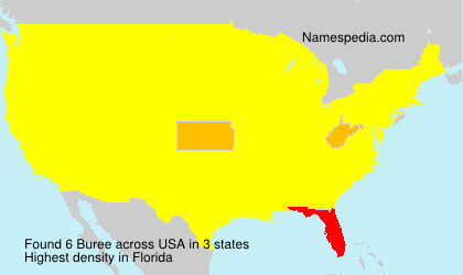 Surname Buree in USA