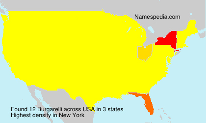 Surname Burgarelli in USA