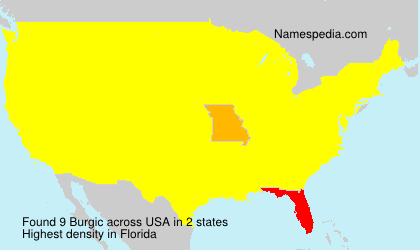 Familiennamen Burgic - USA