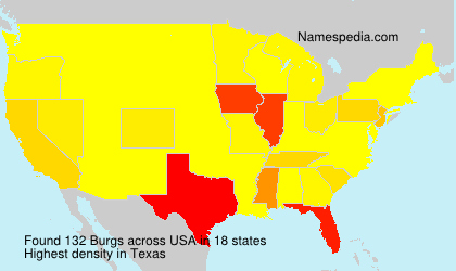 Surname Burgs in USA