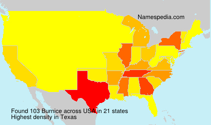 Surname Burnice in USA