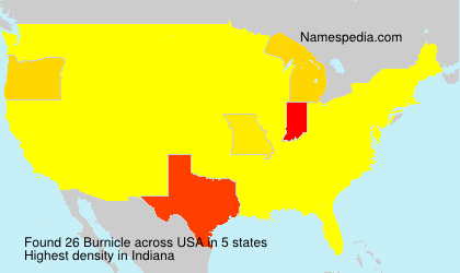 Surname Burnicle in USA