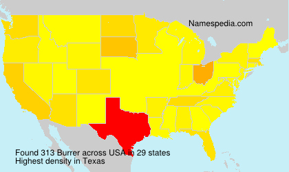 Surname Burrer in USA