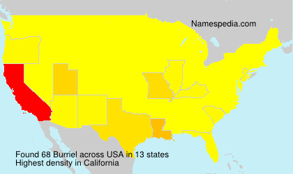 Surname Burriel in USA