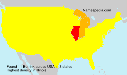 Surname Burrink in USA