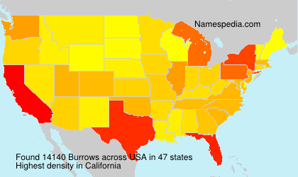 Surname Burrows in USA