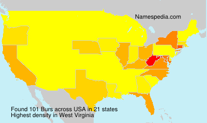 Surname Burs in USA