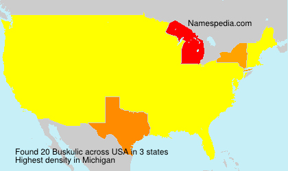 Familiennamen Buskulic - USA
