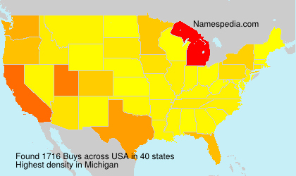 Surname Buys in USA