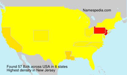 Surname Bzik in USA