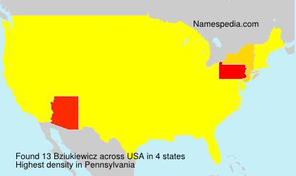 Surname Bziukiewicz in USA